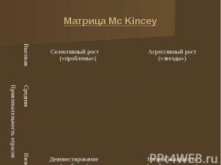 Матрица Мс Kincеу