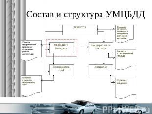 Состав и структура УМЦБДД