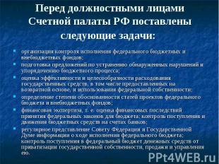 Перед должностными лицами Счетной палаты РФ поставлены следующие задачи: организ
