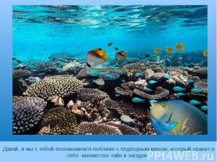 Давай, и мы с тобой познакомимся поближе с подводным миром, который хранит в себ