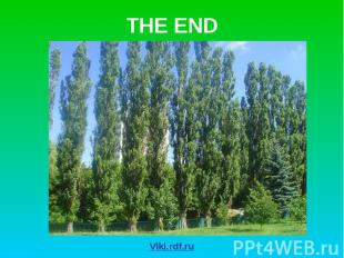 THE END Viki.rdf.ru