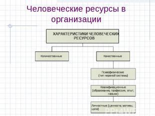 Человеческие ресурсы в организации