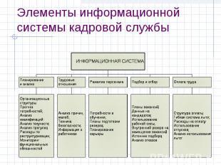 Элементы информационной системы кадровой службы