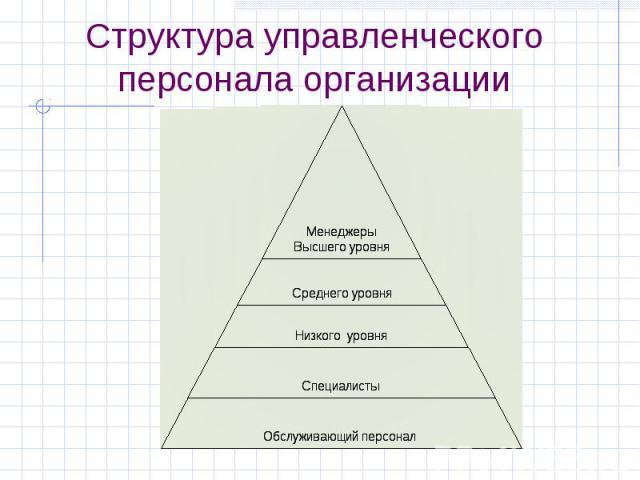 Структура управленческого персонала организации