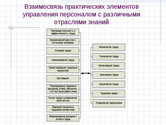 Взаимосвязь практических элементов управления персоналом с различными отраслями знаний