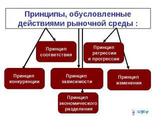 Принципы, обусловленные действиями рыночной среды :