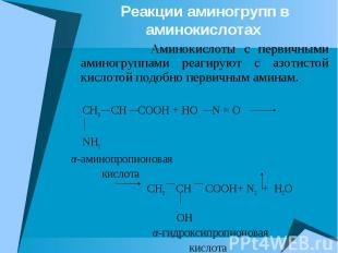 Реакции аминогрупп в аминокислотах Аминокислоты с первичными аминогруппами реаги