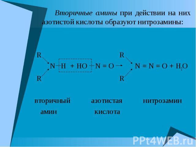 Вторичные амины при действии на них азотистой кислоты образуют нитрозамины: Вторичные амины при действии на них азотистой кислоты образуют нитрозамины: R R N H + HO N = О N = N = О + H2O R R вторичный азотистая нитрозамин амин кислота