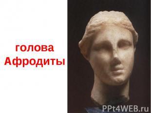 голова Афродиты