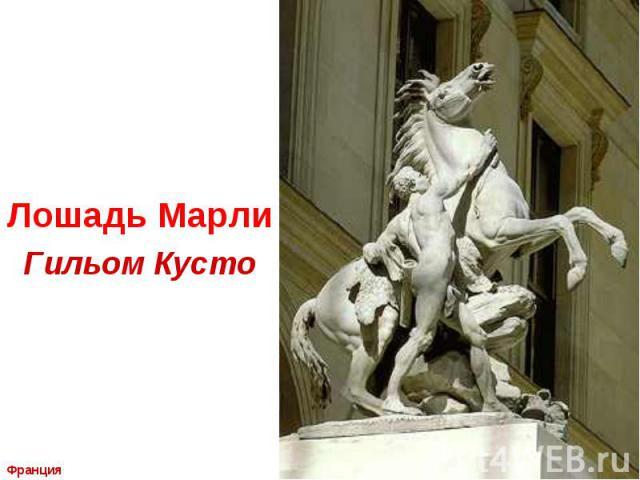 Лошадь Марли Гильом Кусто