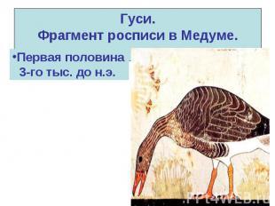 Гуси. Фрагмент росписи в Медуме.