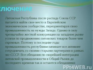Заключение Литовская Республика после распада Союза ССР пытается найти свое мест