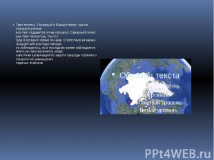 Тают полюса. Северный и Южный полюс, как не отрицали ученые, все-таки поддаются