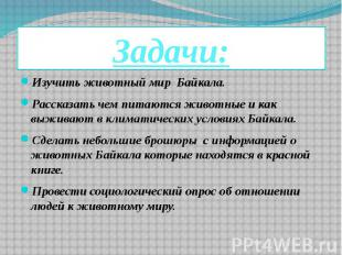 Задачи: Изучить животный мир Байкала. Рассказать чем питаются животные и как выж