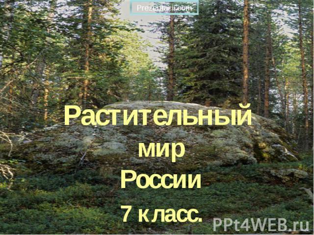 Растительный мир России 7 класс.