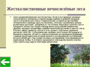 Жестколиственные вечнозелёные леса Зона средиземноморских жестколистных лесов и