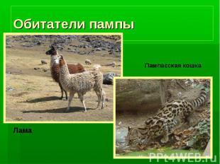 Обитатели пампы