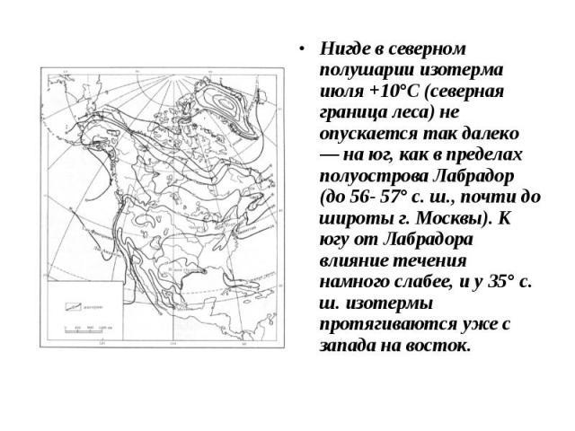 Нигде в северном полушарии изотерма июля +10°С (северная граница леса) не опускается так далеко — на юг, как в пределах полуострова Лабрадор (до 56- 57° с. ш., почти до широты г. Москвы). К югу от Лабрадора влияние течения намного слабее, и у 35° с.…