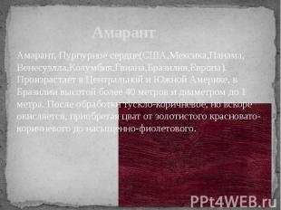 Амарант Амарант, Пурпурное сердце(США,Мексика,Панама, Венесуэлла,Колумбия,Гвиана
