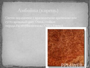 Амбойна (корень) Светло-коричневое с красноватыми крапинами или густо кровавый ц