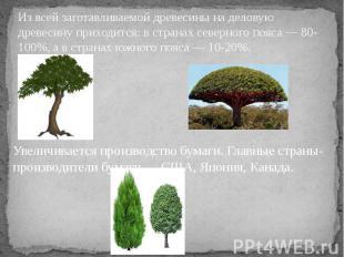 Из всей заготавливаемой древесины на деловую древесину приходится: в странах сев