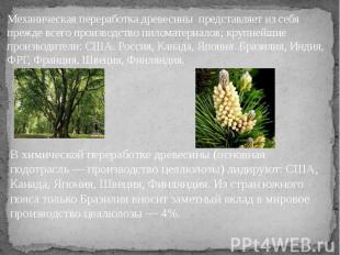 В химической переработке древесины (основная подотрасль — производство целлюлозы