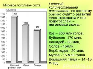 Мировое поголовье скота Главный количественный показатель, по которому обычно су