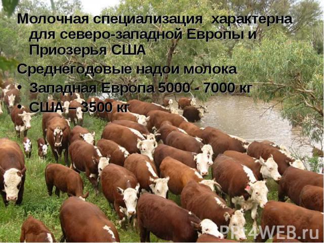 Молочная специализация характерна для северо-западной Европы и Приозерья США Молочная специализация характерна для северо-западной Европы и Приозерья США Среднегодовые надои молока Западная Европа 5000 - 7000 кг США – 3500 кг