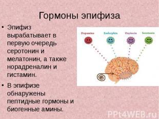 Гормоны эпифиза Эпифиз вырабатывает в первую очередь серотонин и мелатонин, а та