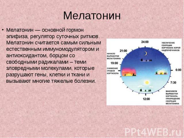 Мелатонин Мелатонин — основной гормон эпифиза, регулятор суточных ритмов. Мелатонин считается самым сильным естественным иммуномодулятором и антиоксидантом, борцом со свободными радикалами – теми зловредными молекулами, которые разрушают гены, клетк…