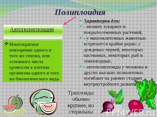 Полиплоидия