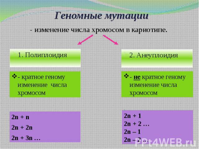 Геномные мутации
