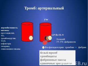 Тромб: артериальный FW