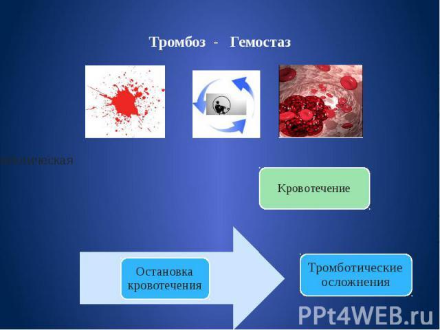 Тромбоз - Гемостаз