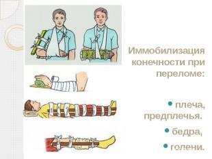 Иммобилизация конечности при переломе: Иммобилизация конечности при переломе: пл