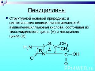 Структурной основой природных и синтетических пенициллинов является 6-аминопениц