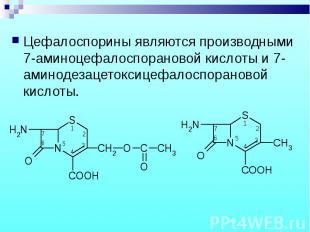 Цефалоспорины являются производными 7-аминоцефалоспорановой кислоты и 7-аминодез