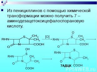 Из пенициллинов с помощью химической трансформации можно получить 7 –аминодезаце