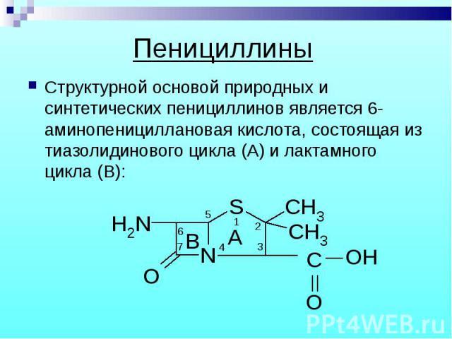 Структурной основой природных и синтетических пенициллинов является 6-аминопенициллановая кислота, состоящая из тиазолидинового цикла (А) и лактамного цикла (В): Структурной основой природных и синтетических пенициллинов является 6-аминопеницилланов…