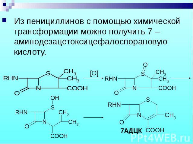 Из пенициллинов с помощью химической трансформации можно получить 7 –аминодезацетоксицефалоспорановую кислоту. Из пенициллинов с помощью химической трансформации можно получить 7 –аминодезацетоксицефалоспорановую кислоту.