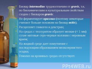 Биовар intermedius трудноотличим от gravis, т.к. по биохимическим и культуральны
