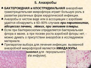 5. Анаэробы БАКТЕРОИДНАЯ и КЛОСТРИДИАЛЬНАЯ анаэробная грамотрицательная микрофло