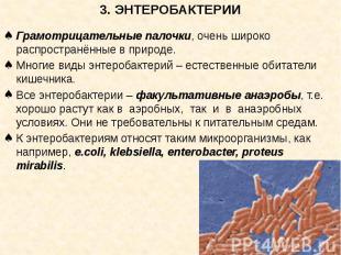 3. ЭНТЕРОБАКТЕРИИ Грамотрицательные палочки, очень широко распространённые в при