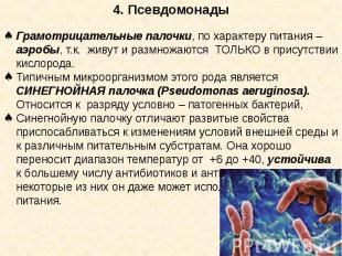 4. Псевдомонады Грамотрицательные палочки, по характеру питания – аэробы, т.к. ж