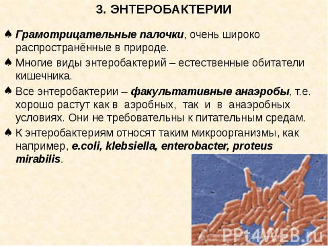 3. ЭНТЕРОБАКТЕРИИ Грамотрицательные палочки, очень широко распространённые в природе. Многие виды энтеробактерий – естественные обитатели кишечника. Все энтеробактерии – факультативные анаэробы, т.е. хорошо растут как в аэробных, так и в анаэробных …