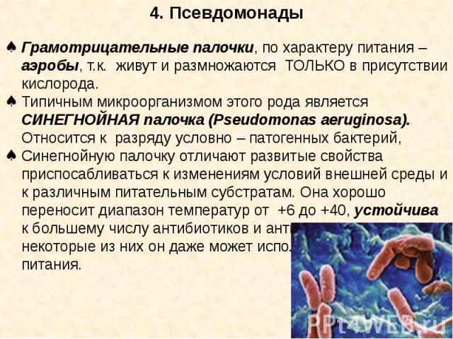 4. Псевдомонады Грамотрицательные палочки, по характеру питания – аэробы, т.к. живут и размножаются ТОЛЬКО в присутствии кислорода. Типичным микроорганизмом этого рода является СИНЕГНОЙНАЯ палочка (Pseudomonas aeruginosa). Относится к разряду условн…