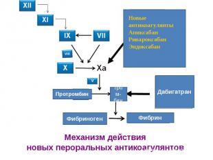 Механизм действия новых пероральных антикоагулянтов