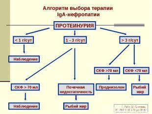 Алгоритм выбора терапии IgA-нефропатии