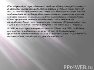 Одна из древнейших отраслей сельского хозяйства в Крыму - виноградарство(р