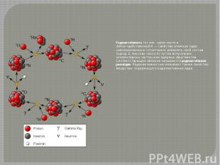 Радиоакти вность (от лат.radius«луч» и āctīvus«действенный»)&n